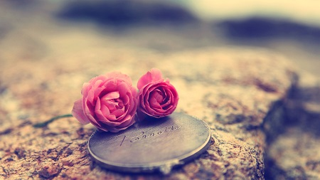 آیا برای داشتن یک زندگی خوب، عشق کافیست؟