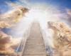به چه دلیل خدا وجود دارد؟