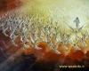 استغفاري که فرشتهها ميکنند براي انسانهاست و براي خودشان نيست.